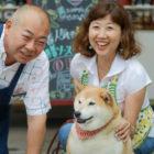 【取材・看板犬】わがままボディの柴犬クウ『三留商店@鎌倉』