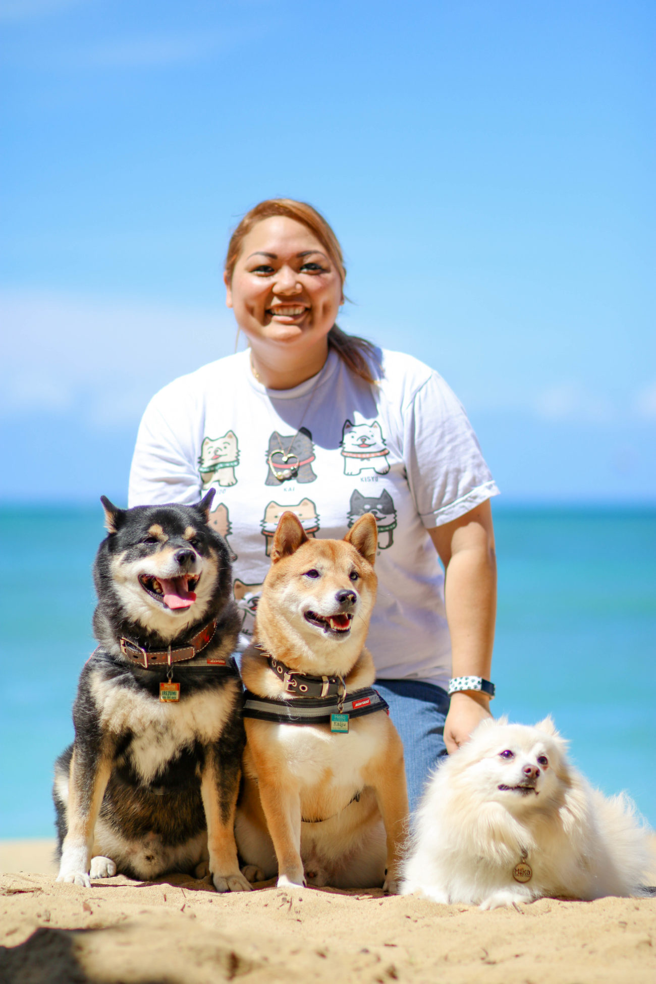 柴犬ハワイ