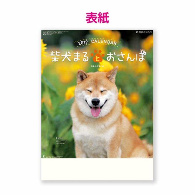 2019年 柴犬まるとおさんぽ カレンダー 壁掛け