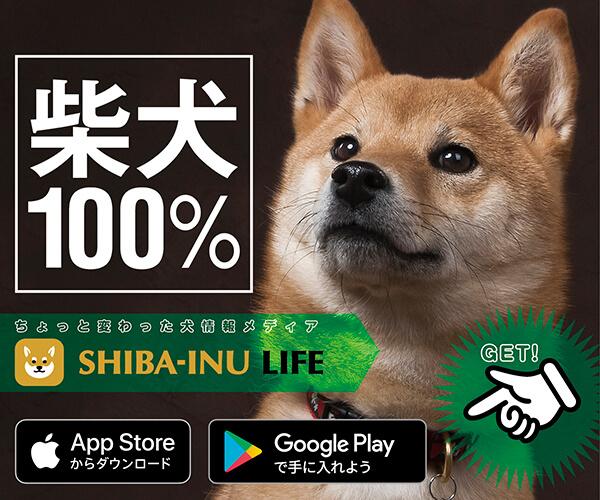 柴犬ライフ公式アプリ