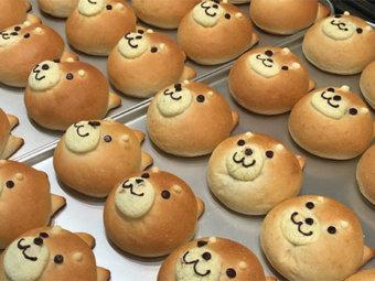 柴犬,柴犬パン