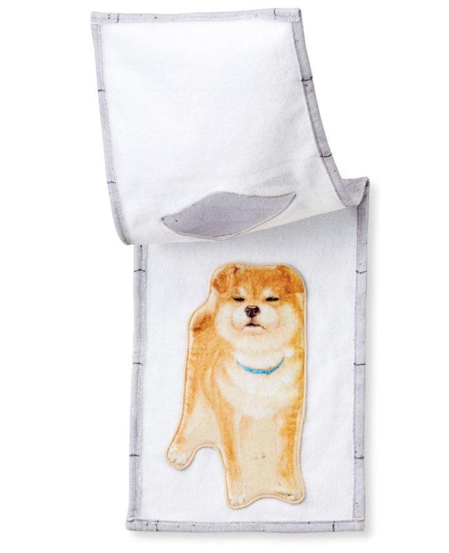 柴犬,タオル