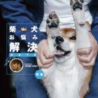 【特集】柴犬のお悩み解決NOTE