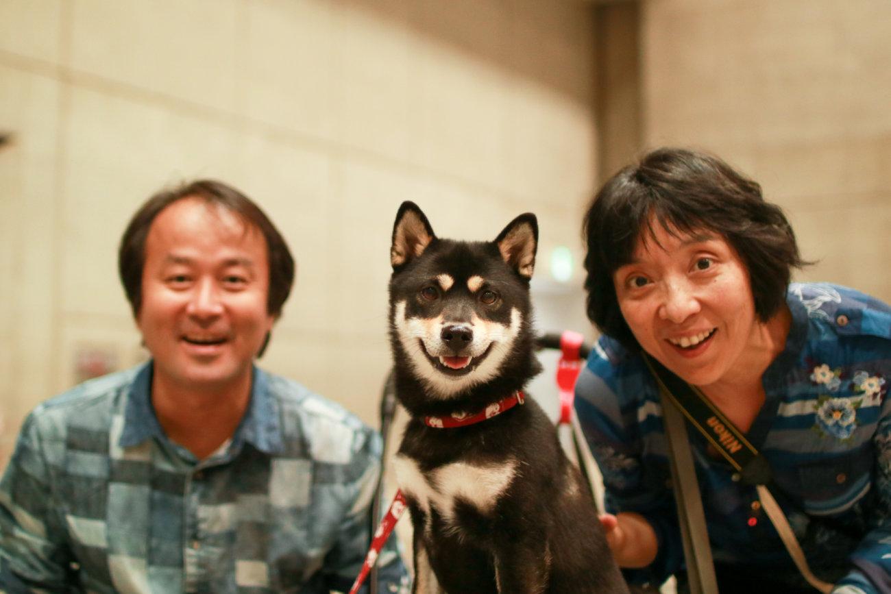柴犬,カートラジャパン2019