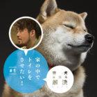 【柴犬お悩み解決NOTE】#1外でしかオシッコしないんです…家の中でしてほしい!【ドッグトレーナー・小野洋平がズバリ回答】