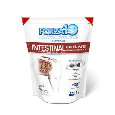 インテスティナルアクティブ 胃腸ケア