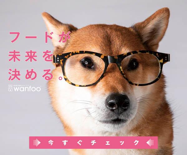 柴犬,ワンフー