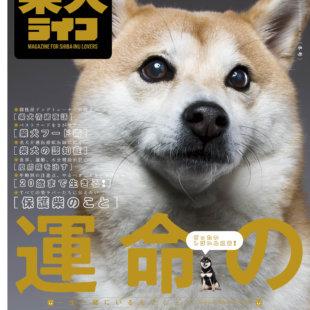 雑誌版『柴犬ライフ』冬号2020