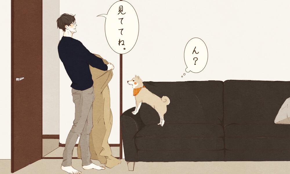 ゆる柴,漫画,柴犬