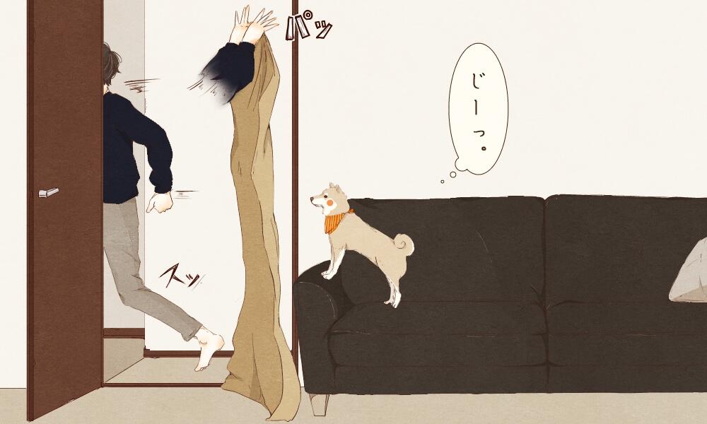 柴犬,漫画