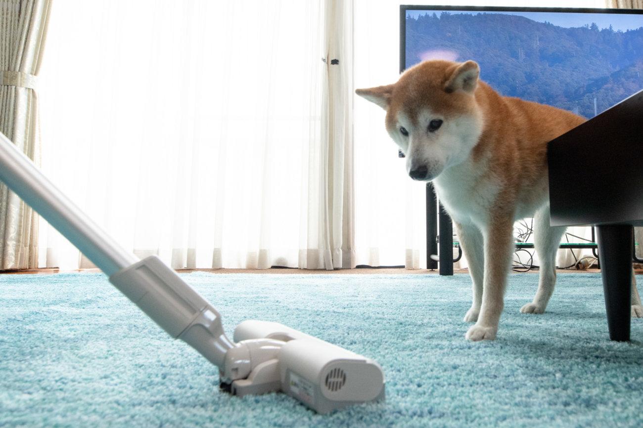 柴犬,パナソニック,掃除機,からまないブラシ