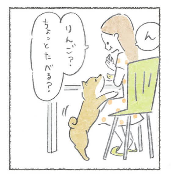 雑誌,柴犬ライフ