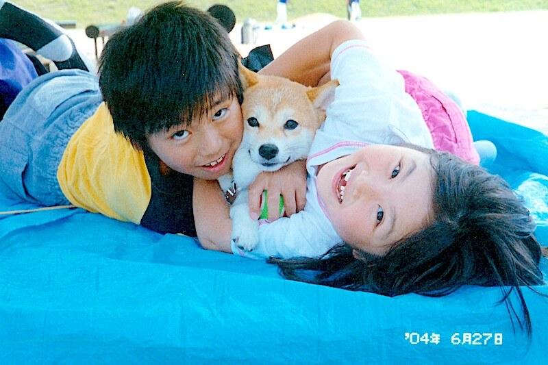 柴犬と子供