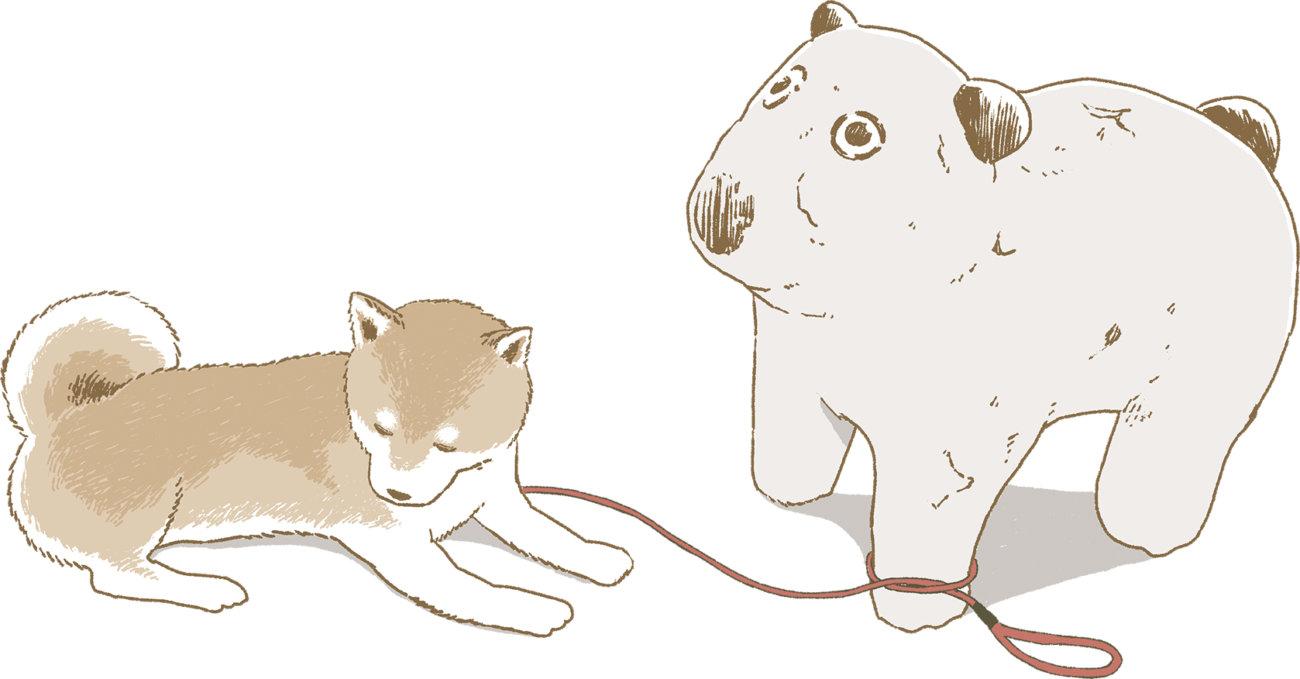 柴犬ライフ,今日のさんぽんた,小学館