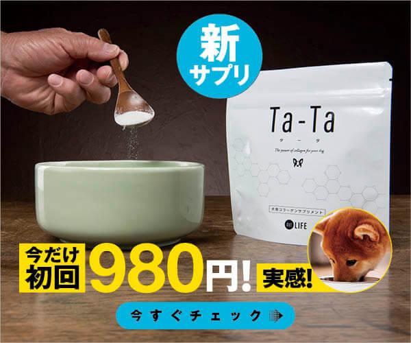 Ta-Ta,タータ,柴犬