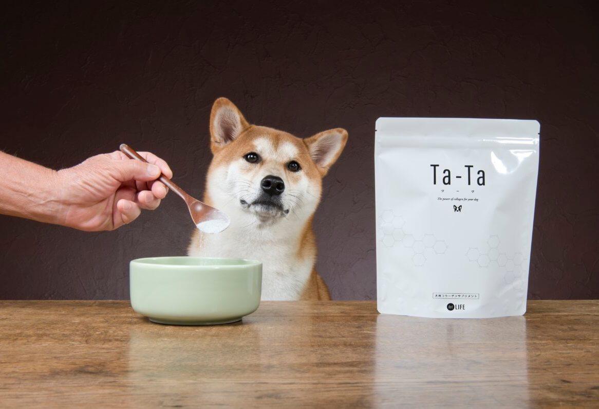 犬用コラーゲンサプリ,Ta-Ta,タータ