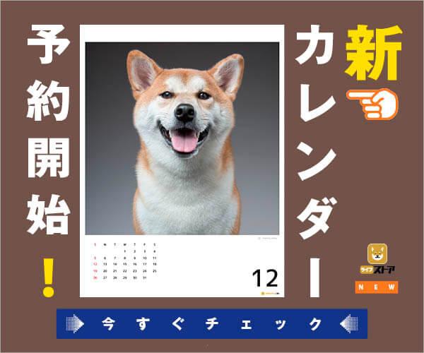 カレンダー,2021,柴犬
