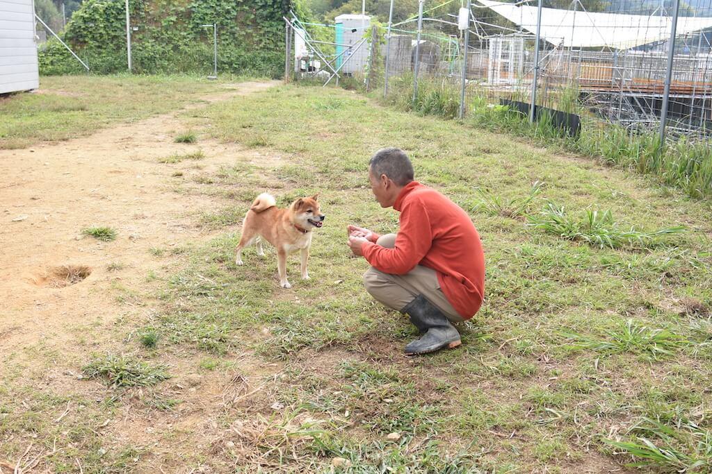 北村紋義さんことポチパパと柴犬