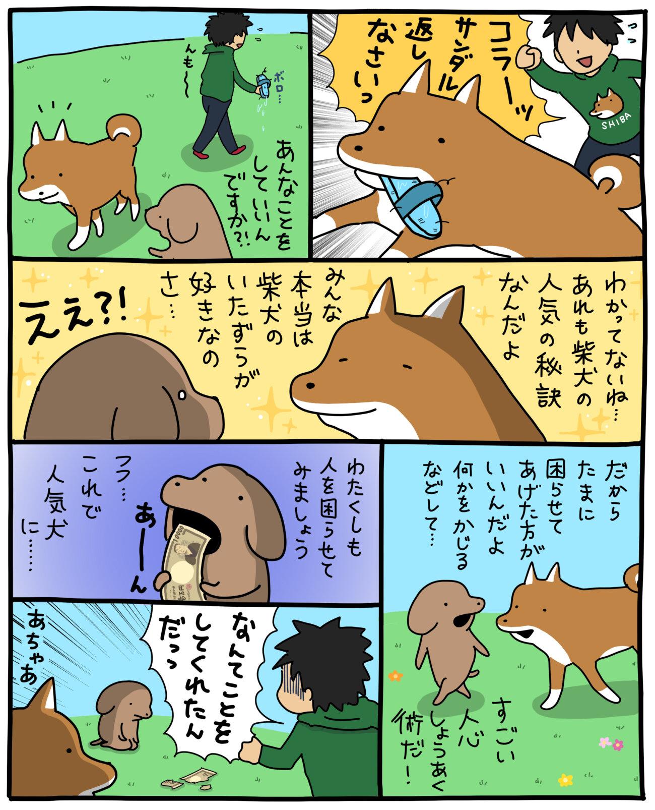 柴犬,こいぬ,うかうか,マンガ