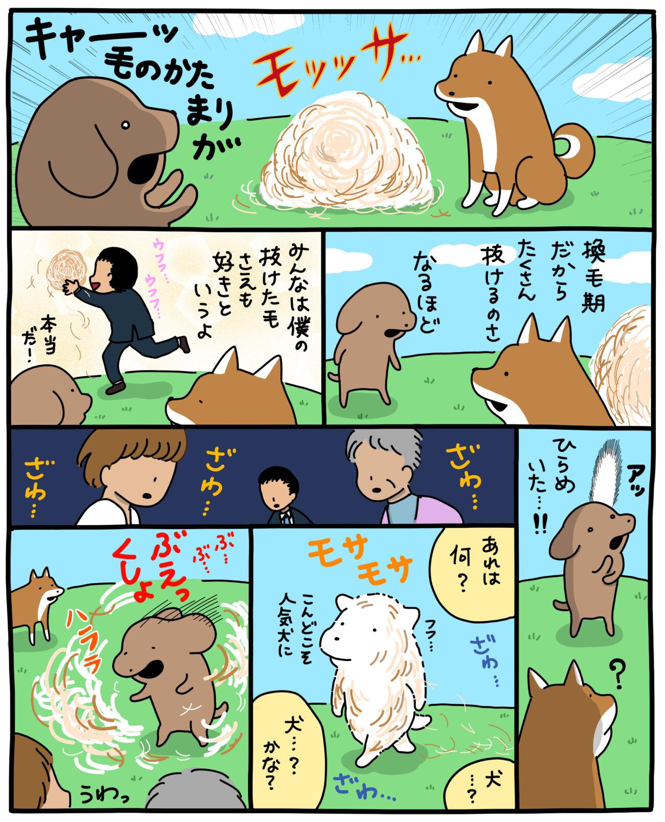 柴犬,マンガ,うかうか