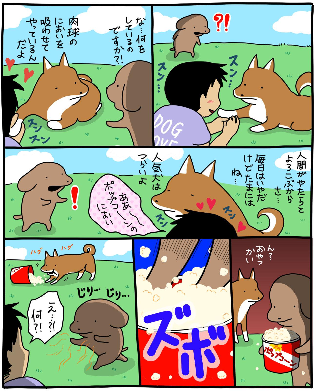 柴犬,うかうか,漫画