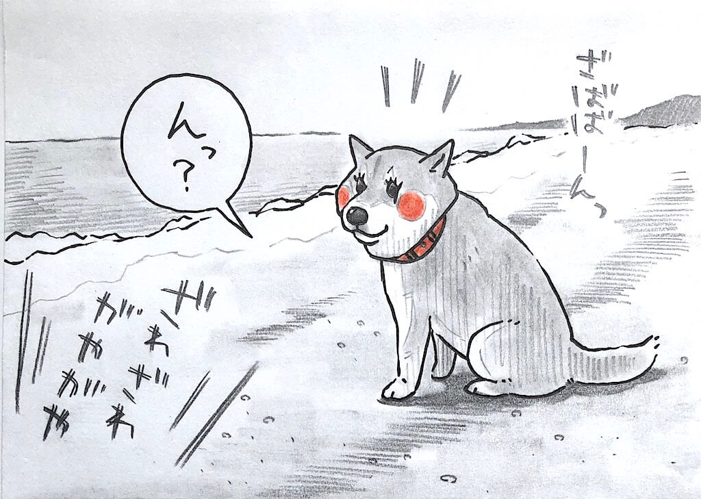勝手に妄想しば,柴犬イラスト